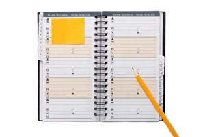 Organize Your Blogging with a Planner or Printables
