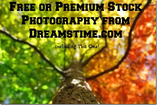 Free or Premium Stock Photography at Dreamstime.com
