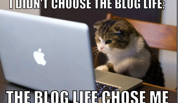 The Blog Life Chose Me